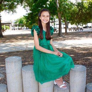 Fancy Emerald Dress